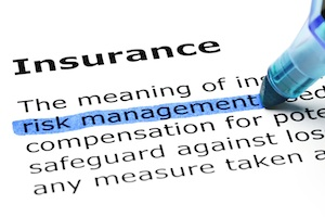 Security Insurance and Risk Management