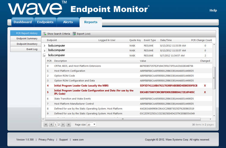 Wave Endpoint Monitor Report Screenshot