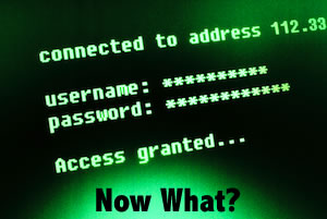 Hacked? An Action Plan and What You Should do Now.