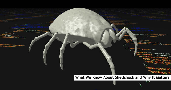 About the Shellshock Vulnerability