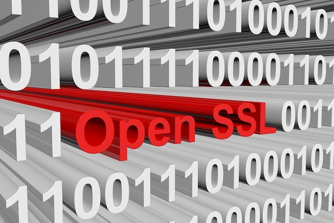 DoS vulnerability patched in OpenSSL