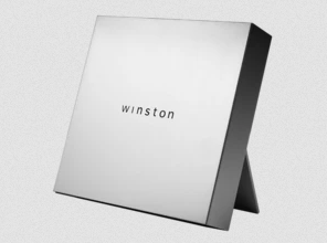 Vulnerabilities found in Winston Privacy devices