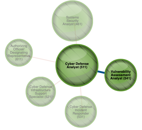 U.S. Government Launches Cyber Career Path Tool