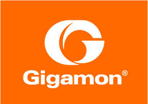 GigaSECURE from GigaMon